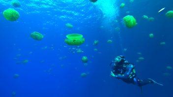 Nitrox / Deep Diving